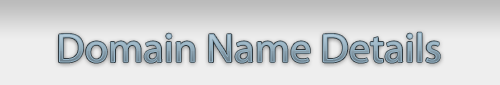 Domain Name Details